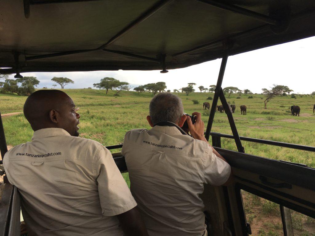 Olifanten fotograferen met Tanzania Specialist